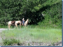 1301 Alberta Red Rock Parkway - Waterton Lakes National Park - horseback riders