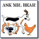 Ask Mr Bear copy