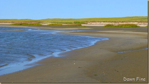 cape cod_027