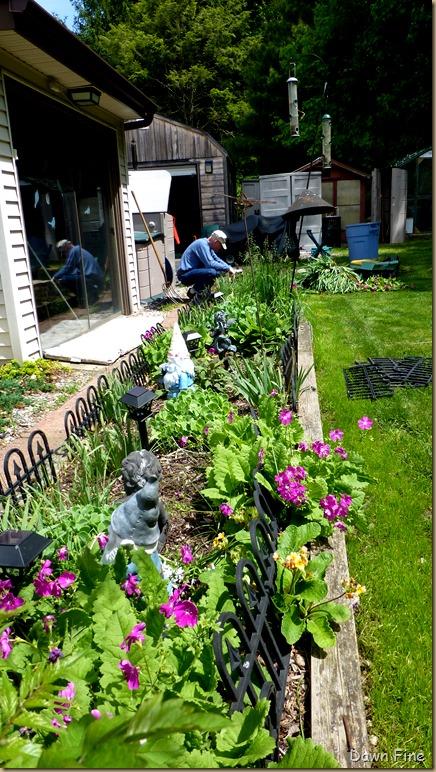 garden rehab_004