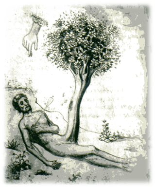 Adan con el falo-arbol de la Vida. Ilustracion del siglo XV.