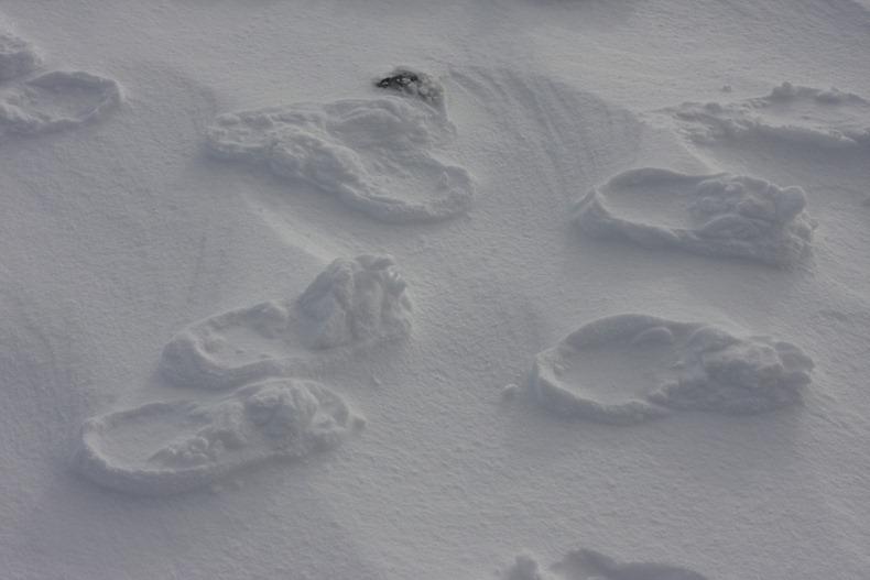 raised-footprints-snow-8