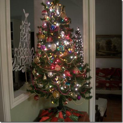 christmas trees 2011 012