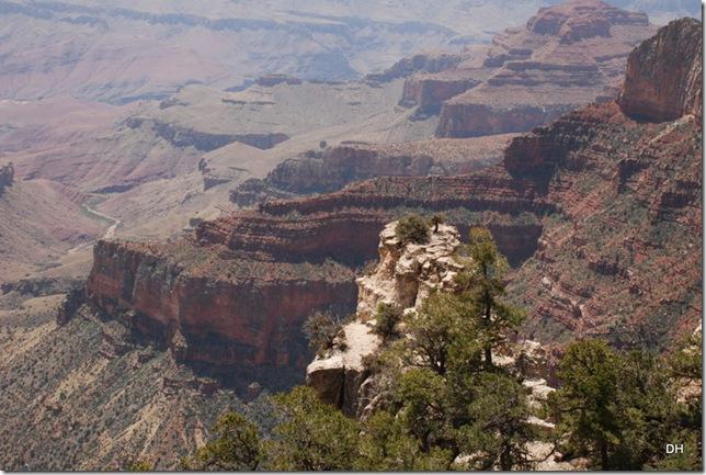 05-17-13 B Grand Canyon North Rim Drive (117)