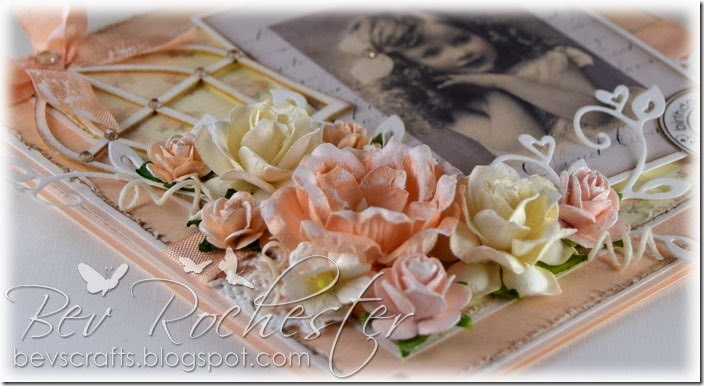 bev-rochester-vintage-peach2a