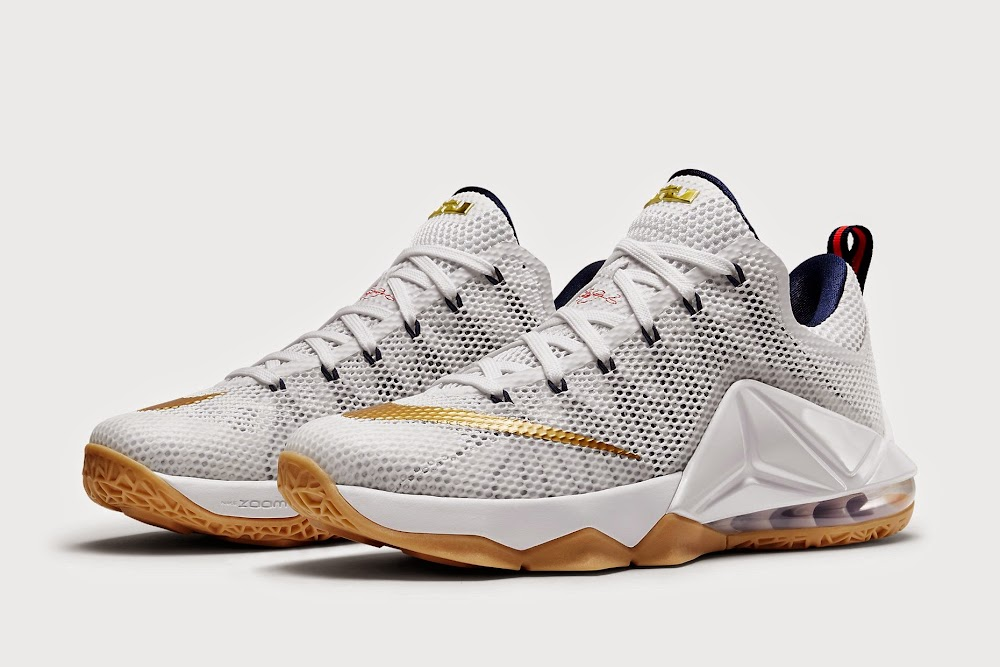 Nike LeBron 10 X White Navy Metallic Gold