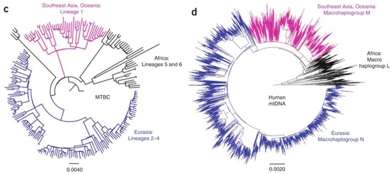 Nature Genetics doi: 10.1038/ng.2744
