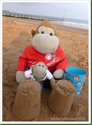 Sandcastles Dawlish Warren