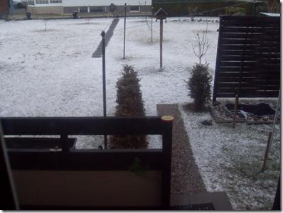 2012_02 Winter im Garten