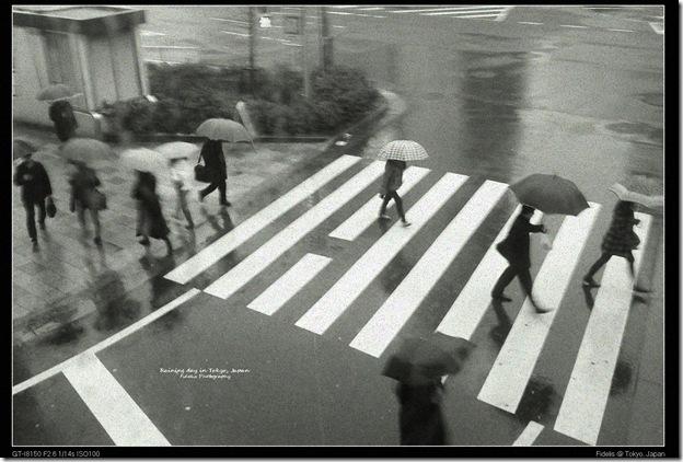 japan205