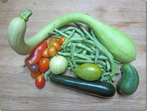 squash&beans