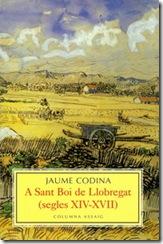1999 - Jaume Codina - A Sant Boi de Llobregat