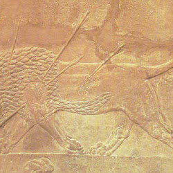 21.- Palacio de Nínive. León herido