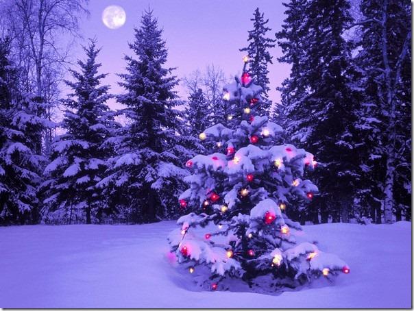 paisajes navidad (6)