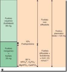 forme del fosforo
