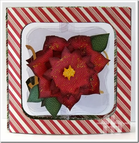 PoinsettiaAccordion3-wm