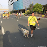 Pet Express Doggie Run 2012 Philippines. Jpg (221).JPG