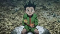 Hunter X Hunter - 101 - Large 22