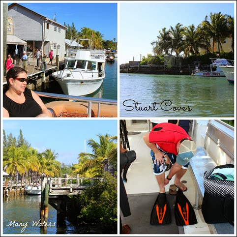 Many Waters Stuart Cove's
