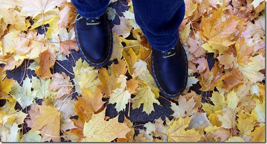 Leaves and Shoes