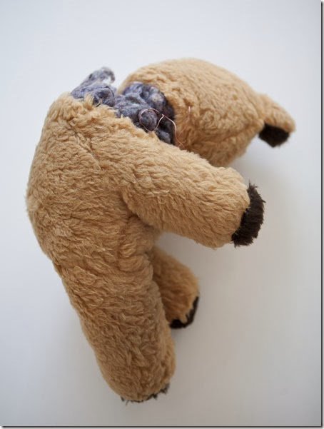 Injured Teddy3