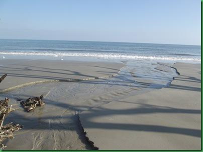 Ocean front walk 131