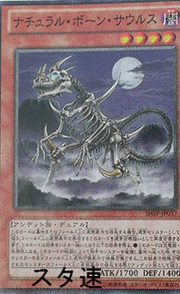 300px-NaturalBoneSaurus-SHSP-JP-OP