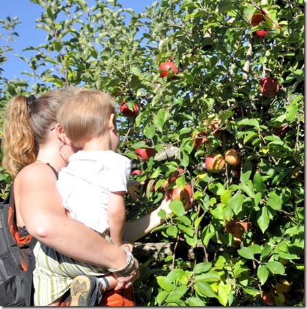 Finley and Mommy Picking Apple
