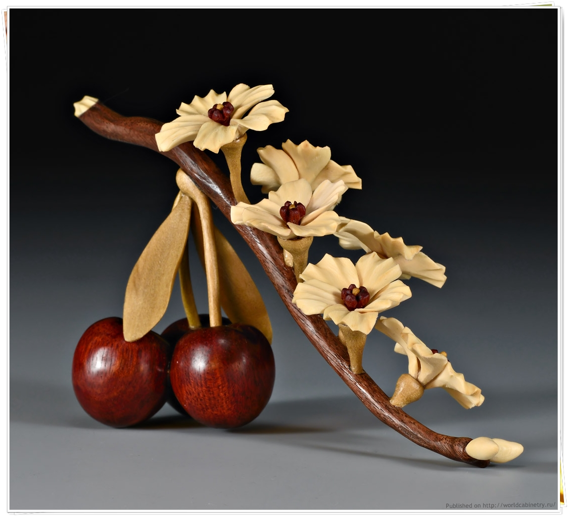 http://lh6.ggpht.com/-P_B3AmExGSY/T2hC20-OhoI/AAAAAAAABdo/4Ye-oZ8DsSk/w1280/L25-Cherry-Branch-FW4211.jpg