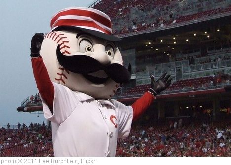 'Mr. Redlegs' photo (c) 2011, Lee Burchfield - license: http://creativecommons.org/licenses/by/2.0/