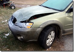 deer collision 05