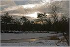 Wintereinbruch im Moor bei Niedersandhausen