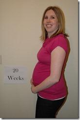 20 weeks (3) (681x1024)