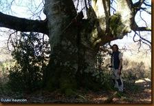 Gran haya - Iturissa - Espinal