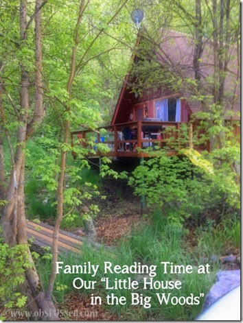 obSEUSSed Cabin Reading Little House in Big Woods