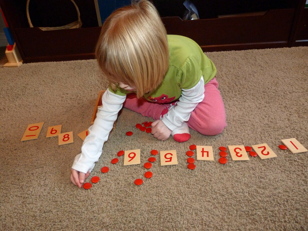 [Montessori%2520Wooden%2520Counters%2520and%2520Cards%255B4%255D.jpg]