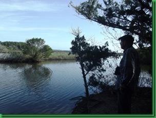 Bulow Creek &  Tamoka SP (44)_thumb[1]