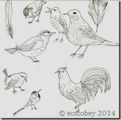 bird study for tat.png