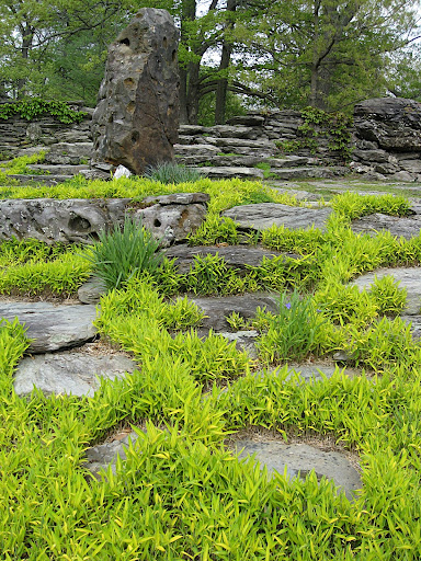 The grasses soften the edges of the stones and highlight the random pattern between them.
