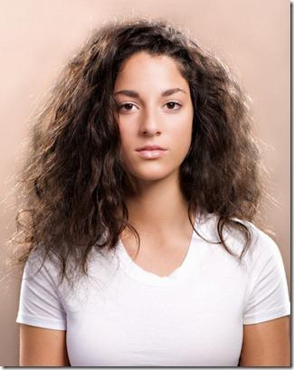 Remedios Caseros para el cabello con Frizz