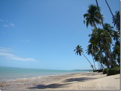 Praia do Patacho Rota Ecológica de Alagoas