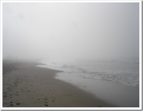 Foggy Ventura beach