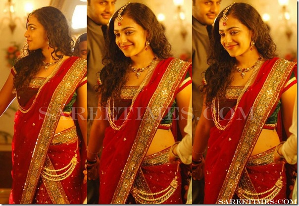 Nithya_Menon_Embroidery_Saree