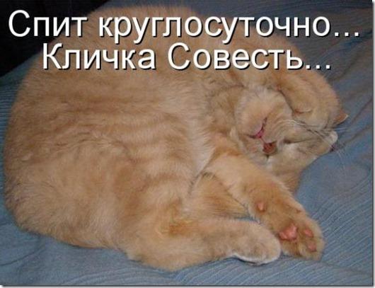 e7515ee182859d01b85a300aa83_prev