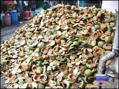 mountain of coconut husks