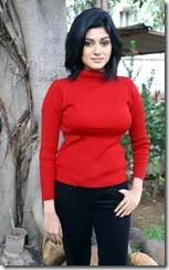 Actress Oviya @ Madha Yaanai Koottam Press Meet Photos