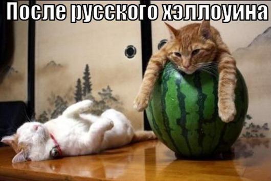posle-russkogo-hellouina_1319200285