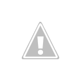 Blooming Grove Trails - Log Bridge with water!  Finally!