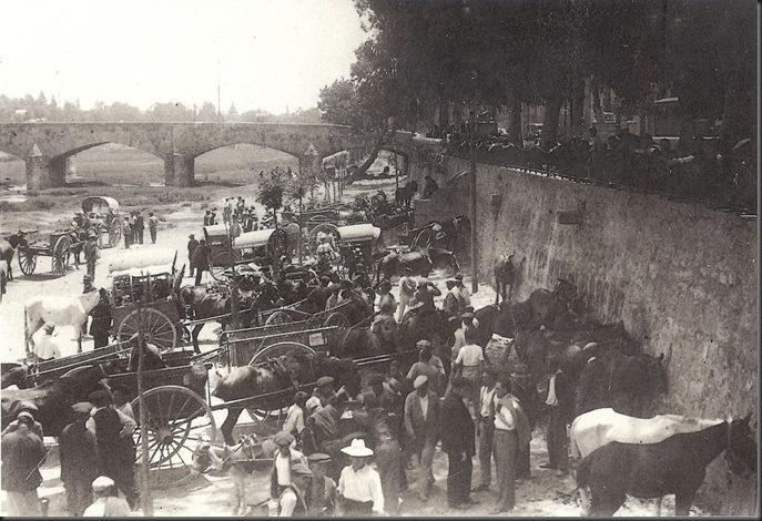 Feria de Ganado post 11840