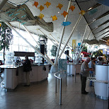having lunch at schiphol airport in London, London City of, United Kingdom
